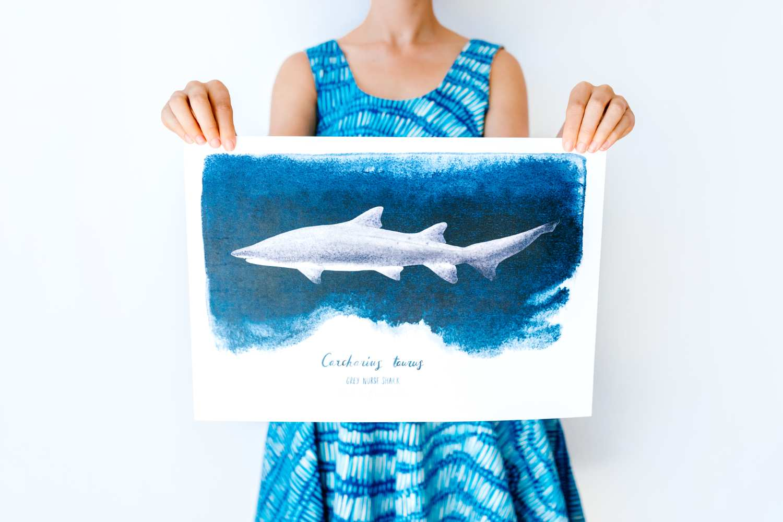 Shark Print Olive Tree Market Newcastle